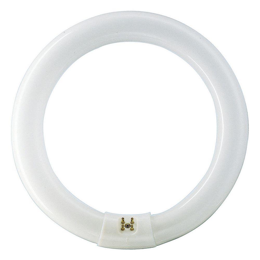 MASTER TL-E Circular Super 80 40W/840 1CT PHILIPS
